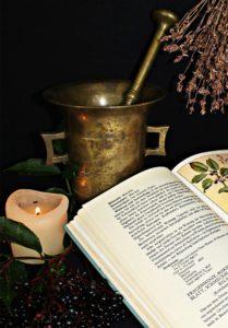 Moringa oleifera diente schon vor 5000 Jahren als Heilmittel