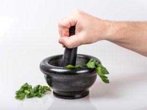 Moringablätter können frisch oder etrocknet verwendet werden